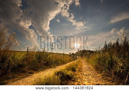 Nice view of the dirt road lit by the setting sun. Moravian landscape Boskovice.