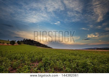 Nice view of the field forest and clouds at sunset. Moravian landscape Boskovice.