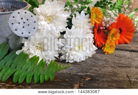 pretty flowers on a wooden and old plank with metal watering can