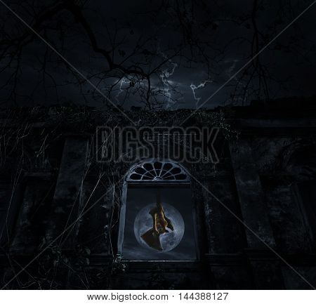 Bat scream and hang on old ancient window castle over dead tree moon and cloudy sky Spooky background Halloween concept