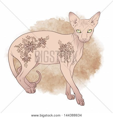 Hairless sphynx cat with mehndi ornaments over sepia watercolor background isolated Vector illustration