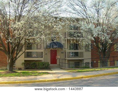 Virginia Apartment In Spring