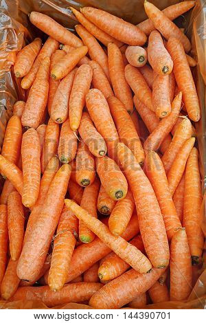 Bright orange color of carrots close up on market