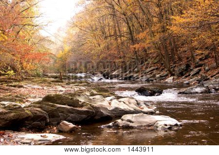 Autumn Stream in the mountains near