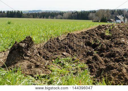 plowed meadow became fresh farmland - clod Closeup
