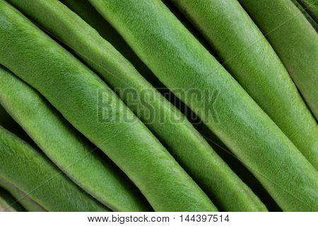 Fresh Green Runner Beans Background