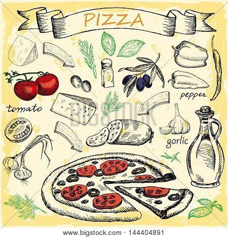 Pizza with set of ingredients for design menu. Vintage fast food background. Hand drawn vector illustration.