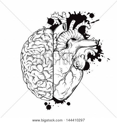 Hand Drawn Line Art Human Brain And Heart Halfs. Grunge Sketch Tattoo Design Isolated On White Backg