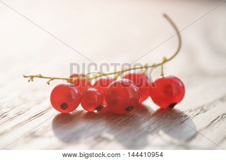 freshly picked red currant on oak wood table, closeup photo shallow focus