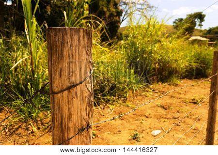 Cerca de madeira com arame e vegetação