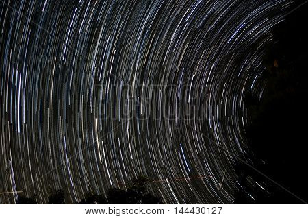 star trails with a shooting star in a forest