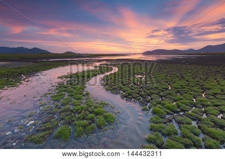 Natural small waterway over cracked land with beautiful sunset sky background
