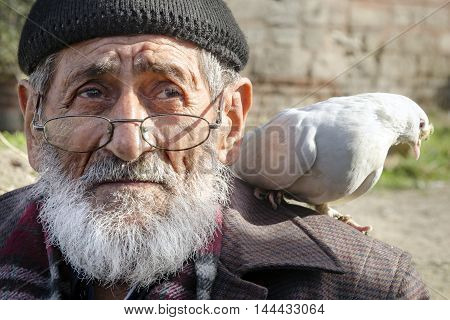 Istanbul Turkey - January 01 2015: White Bearded Grandfather and Pigeons friendly. Istanbul Topkapi bird markets bird seller grandfather was seen with pigeon on shoulder.