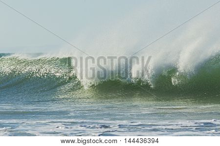 Large wave breaking on the incoming tide with lots of sea spray