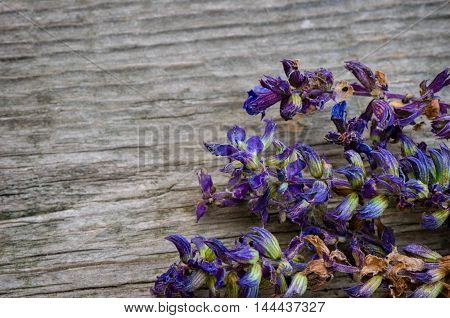 Lavender flowers on a wooden background. Close up.
