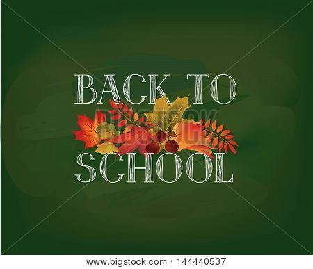 Back To School. Banner With  Autumn Leaves Over Green Chalkboard Background. Vector.