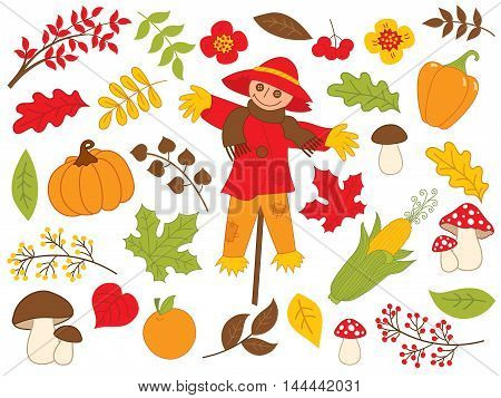 Vector harvest set with scarecrow, pumpkin, corn, berries, leaves and mushrooms