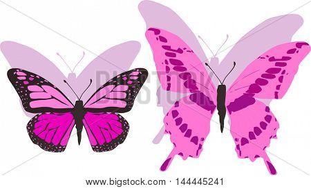 illustration with pink butterflies isolated on white background