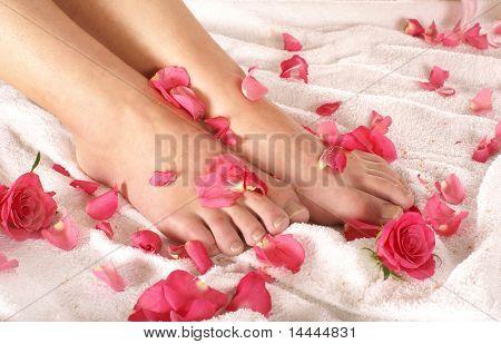 Composición de spa de piernas y flores