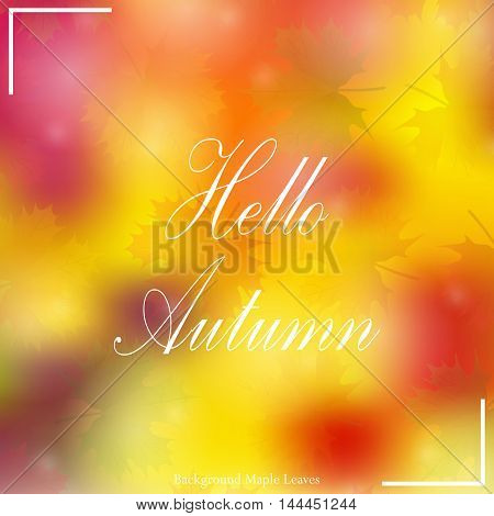 Beautiful autumn background with the text vector