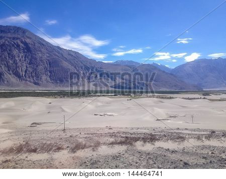 Nubra Valley, a green area in Leh Ladakh India