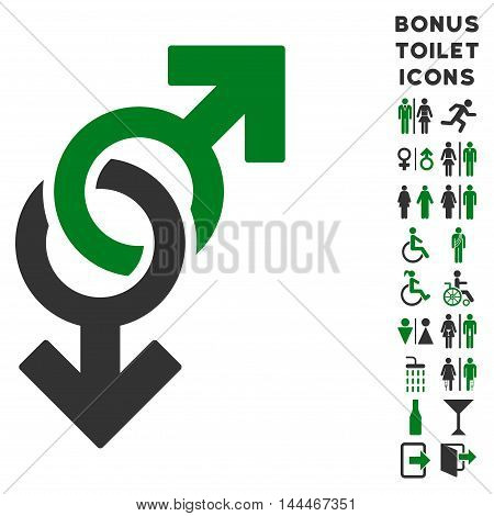 Gay Symbol icon and bonus male and female toilet symbols. Vector illustration style is flat iconic bicolor symbols, green and gray colors, white background.