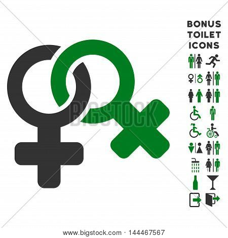 Lesbi Symbol icon and bonus man and lady toilet symbols. Vector illustration style is flat iconic bicolor symbols, green and gray colors, white background.