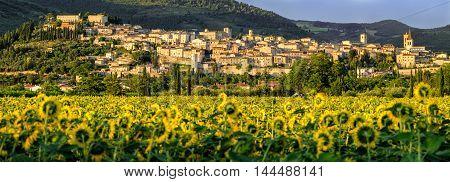 Village of Spello (Umbria Italy) and landscape