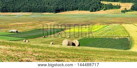 Parco di Colfiorito (Umbria) and fields landscape