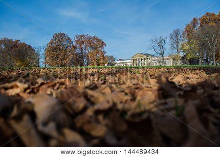 Autumn Leaves Leading to Castle Public Park Stuttgart Germany