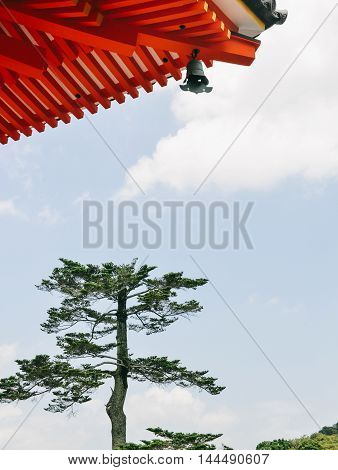 Single pine tree under roof of ancient Kiyomizu-dera temple in Kyoto, Japan, giving a typical oriental zen atmosphere.