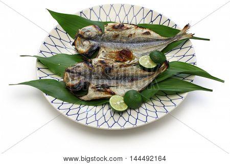 grilled fish ( horse mackerel ), japanese cuisine isolated on white background