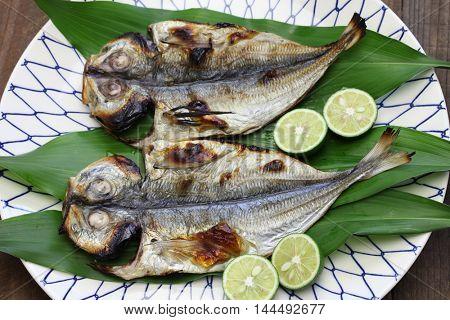 grilled fish ( horse mackerel ), japanese cuisine