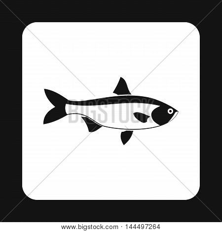 Salmon fish icon in simple style isolated on white background. Inhabitants aquatic environment symbol