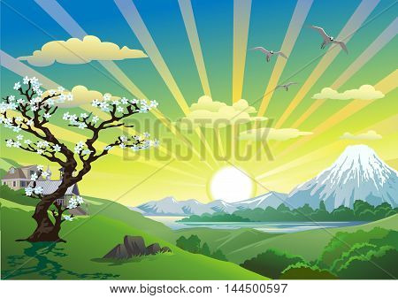 landscape - mountains above the lake. Japanese Sakura on the hill. Vector illustration