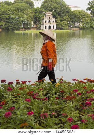 Hanoi, Vietnam - Aug 27, 2016: Asian gardener taking care of a botany garden on the bank of Hoan Kiem (Sword) lake and Turtle Tower on a small island behind.