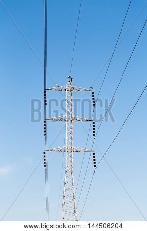 power poles with wires on a background of blue sky