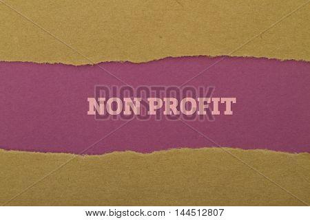 Non Profit word written under torn paper.