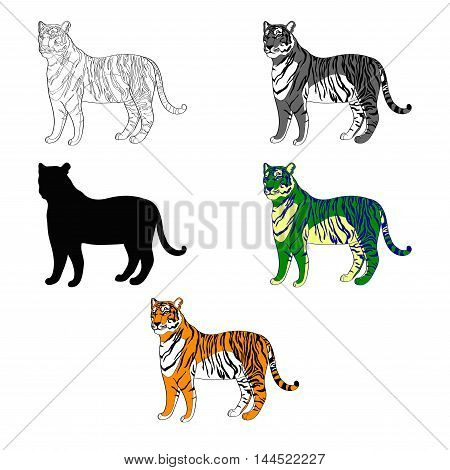 vector illustration depicting a tiger. line silhouette, black and white, color
