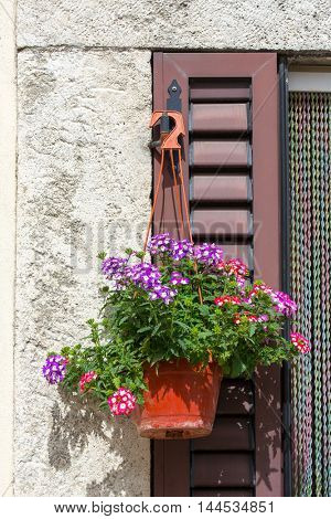 Potted plants decorating the front door of a house in the village of Bagni San Filippo, Tuscany, Italy