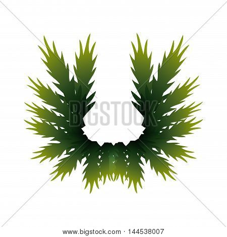 leaves pine merry christmas decoration celebration icon. Flat and isolated design. Vector illustration
