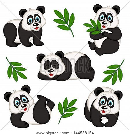 set of isolated panda - vector illustration, eps