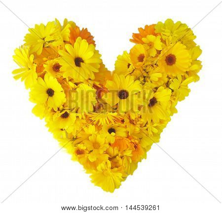 Heart made of colorful bright flowers isolated on white  background top view