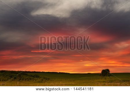 rural landscape with the beautiful sunset and fields of wheat