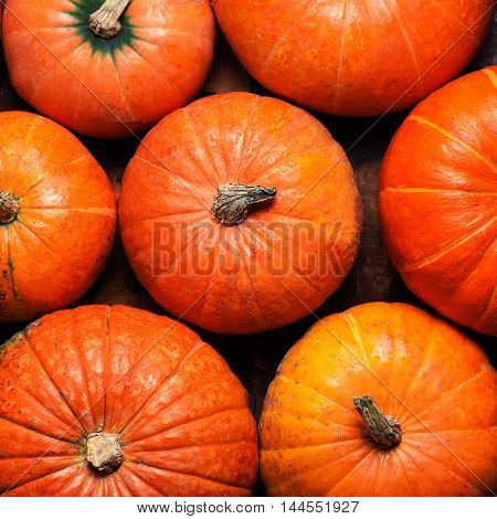 Assortment of autumn pumpkins. Frame with pumpkins on a wooden table.
