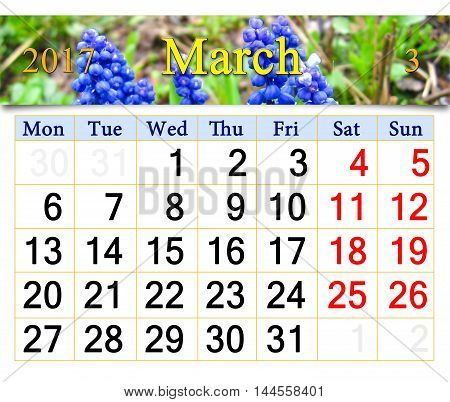 calendar for March 2017 with flowers of muscari