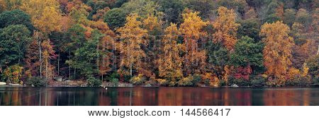 Autumn colorful foliage with lake reflection panorama.