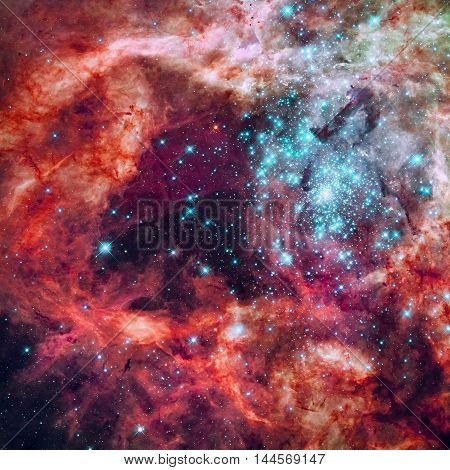 Star Cluster In The Tarantula Nebula. Large Magellanic Cloud.