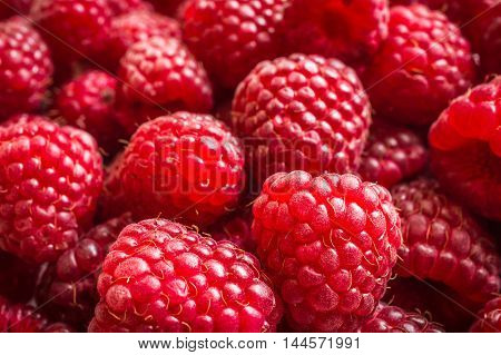 Fresh red raspberries background close up photo