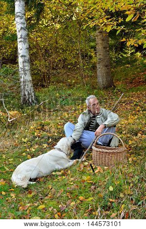 Old vital man and his golden retriever dog sitting on grass and having rest during mushroom hunting in autumn forest